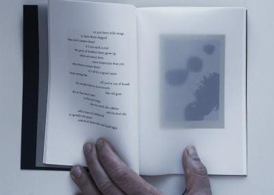 Petals, Metal. Water: Black. Artist's book (3)