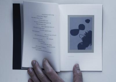 Petals, Metal. Water: Black. Artist's book (4)