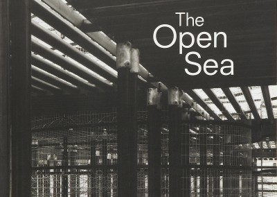 Andrew Sabin. The Open Sea exhibition catalogue cover