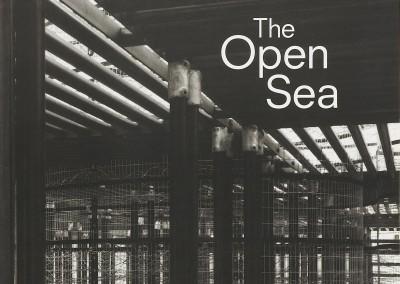 Andrew Sabin. The Open Sea exhibition catalogue cover