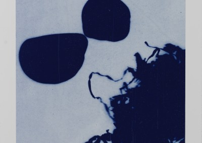 Petals, Metal. Water: Black. Artist's book. Plate (4)
