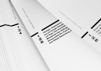 Frusna ögonblick book detail